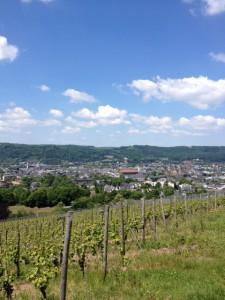 Blick vom Petrisberg auf Trier